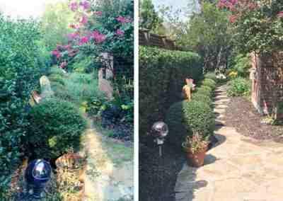 before & after of landscape cleanup