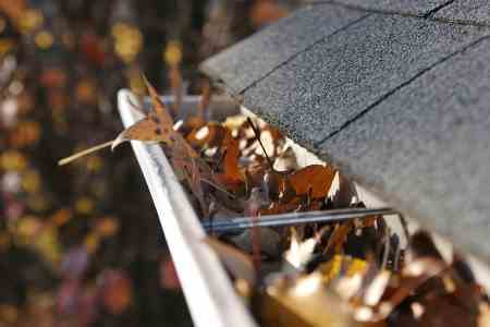gutters filled with leaves, need gutter guards